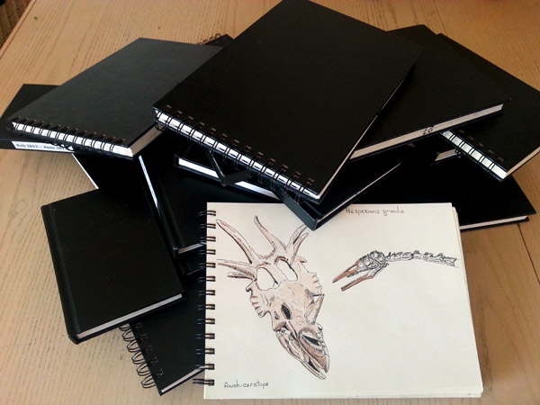 In the future my daughter is going to be faced with the task of taking my sketchbooks to the landfill. When she does this, I suspect my pile of Stillman & Birn sketchbooks will be even larger. These are the ones I've filled in the past 3 years.